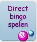 Bingo met SMS