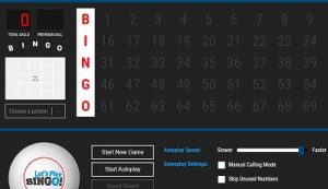 Online Bingo Caller