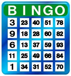 Bingo Getallen Lot